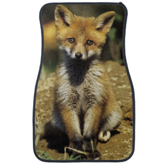 Red Fox, Vulpes vulpes , young at den, Car Floor Mat