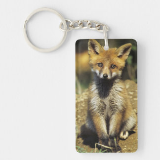 Red Fox, Vulpes vulpes , young at den, Keychain
