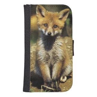 Red Fox, Vulpes vulpes , young at den, Galaxy S4 Wallets