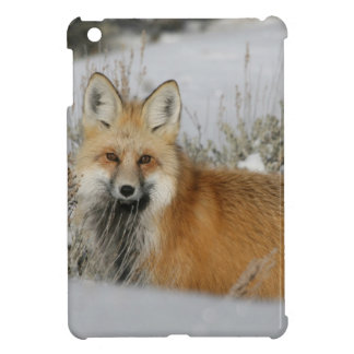 red-fox WIld Animal Gift idea Cover For The iPad Mini