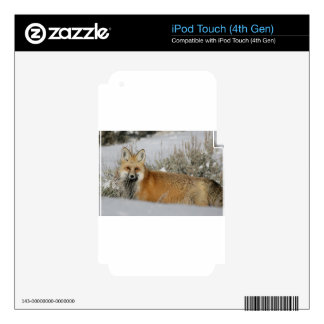 red-fox WIld Animal Gift idea Skins For iPod Touch 4G