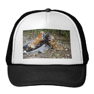 Red Foxes - Brotherly Love Trucker Hat