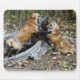 Red Foxes - Brotherly Love Mouse Pad