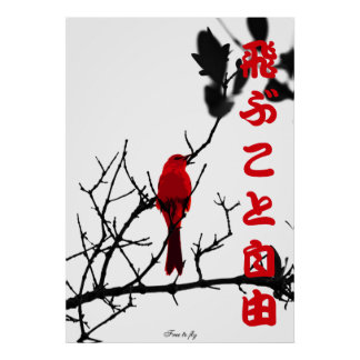 Red free to fly poster