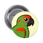 Red-fronted Macaw Button