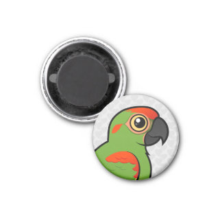 Red-fronted Macaw Fridge Magnets