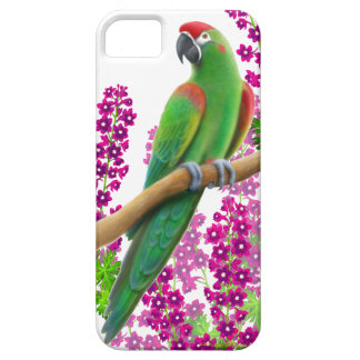 Red Fronted Macaw Parrot iPhone Case