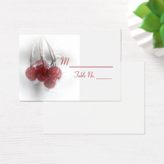 Red Frosty Berries Winter Wedding Place Cards