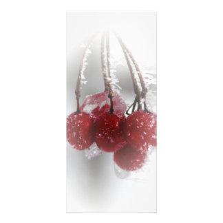 Red Frosty Berries Winter Wedding Program