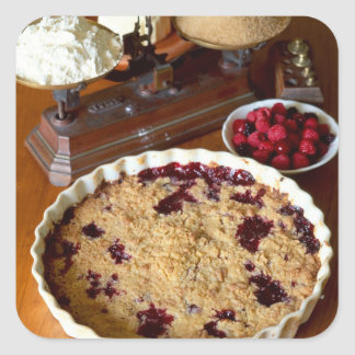 Red fruit crumble For use in USA only.) Square Sticker
