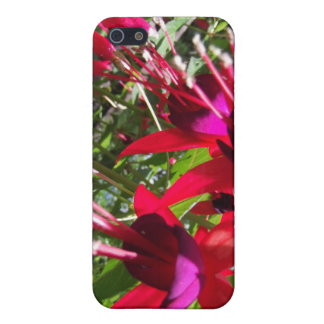 Red Fuchsia Covers For iPhone 5