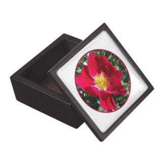 Red / Fuchsia rose Premium Trinket Box