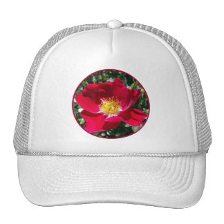 Red / Fuchsia rose Trucker Hat