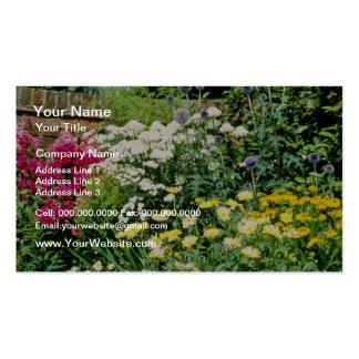 Red Garden Border With Achillea Ptarmica Phlox Business Card Template