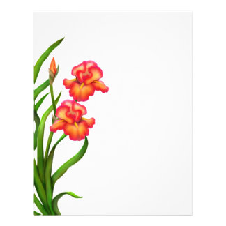 Red Garden Iris Flowers Letterhead