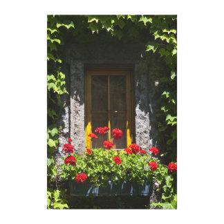 Red Geranium Flowers Window Box Canvas Print