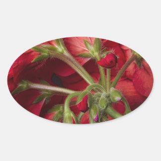 Red Geranium In Progress Oval Sticker