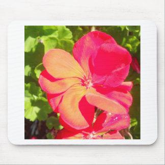 Red Geranium Mouse Pad