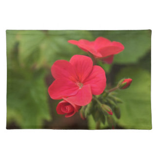 Red geranium place mats. cloth placemat