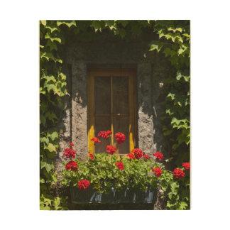 Red Geranium Window Box Wood Canvas Print