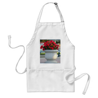 Red geraniums apron