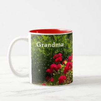 Red Geraniums Flower Garden Mug