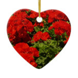 Red Geraniums Ornament