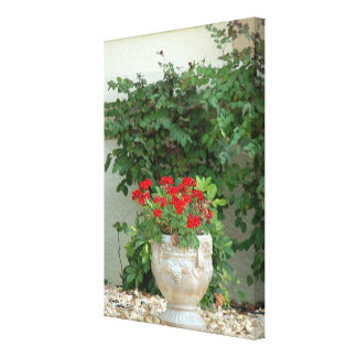 Red geraniums Stretched Canvas Print