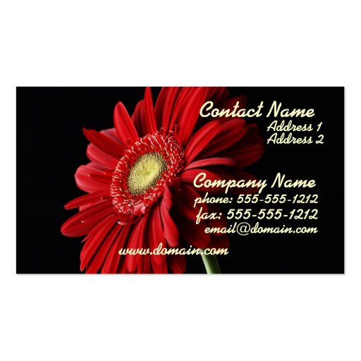 Red Gerber Daisy Business Card