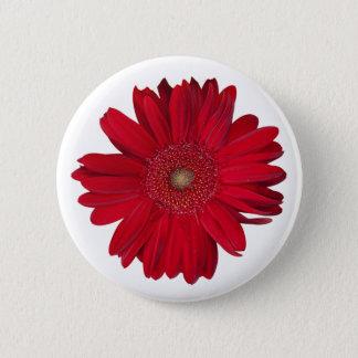 Red Gerber Daisy Close Up Photograph Pinback Button