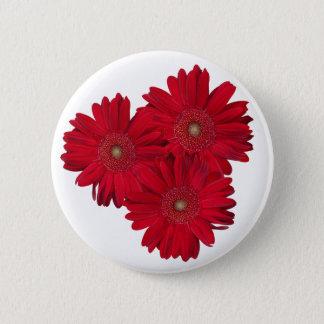Red Gerber Daisy Close Up Photographs Button