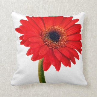 Red  Gerber Daisy Flowers Floral Daisies Flower Pillows