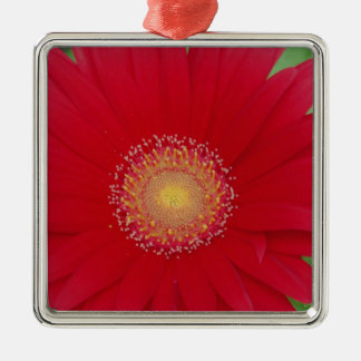 red gerber daisy metal ornament