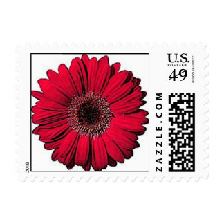 Red Gerber Daisy Stamp