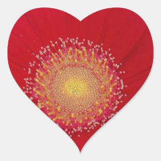 red gerber daisy heart stickers