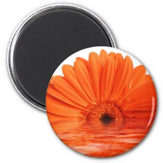 red gerbera 2 inch round magnet