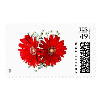 Red Gerbera Daisies and Stephanotis Wedding Favors Postage