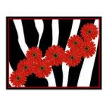 RED GERBERA DAISIES ON ZEBRA PRINT POST CARDS
