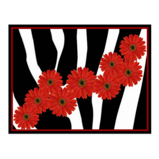 RED GERBERA DAISIES ON ZEBRA PRINT POSTCARD