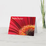 Red Gerbera Daisy Easter Greeting Card