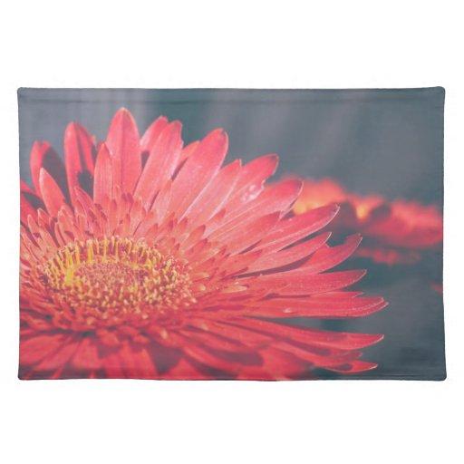 Red Gerbera Daisy Flower Placemat