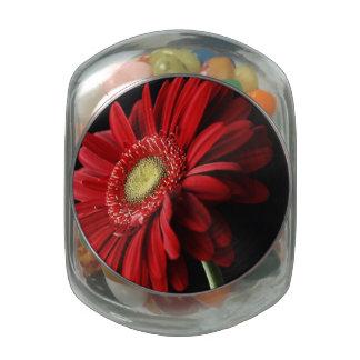 Red Gerbera Daisy Glass Jars