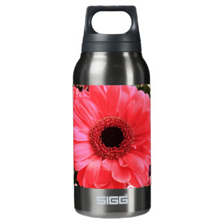 Red Gerbera Daisy Insulated Water Bottle