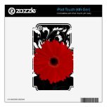 Red Gerbera Daisy on Black Skin For iPod Touch 4G
