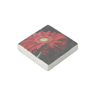 Red Gerbera Daisy Stone Magnet