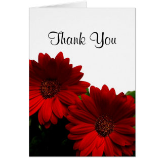 Red Gerbera Daisy Thank You Card