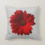 Red Gerbera Daisy throw pillow