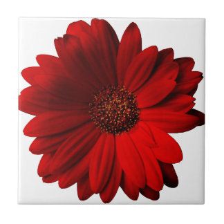 Red Gerbera Daisy Small Square Tile