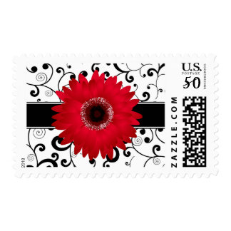 Red Gerbera Daisy with Black Scroll Design Postage