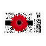 Red Gerbera Daisy with Black Scroll Design Postage Stamp